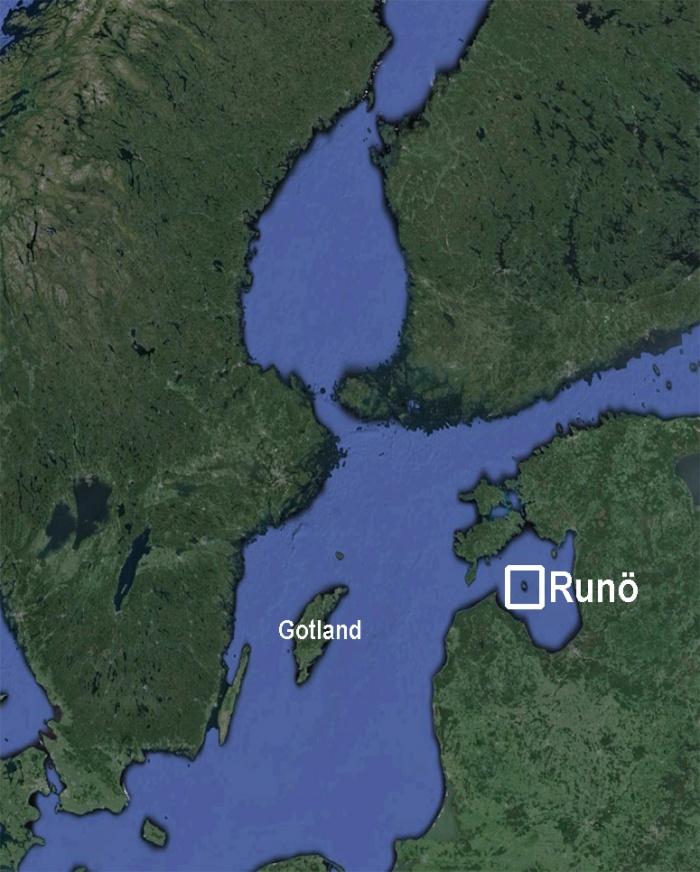 1-runo-rigaviken-estland