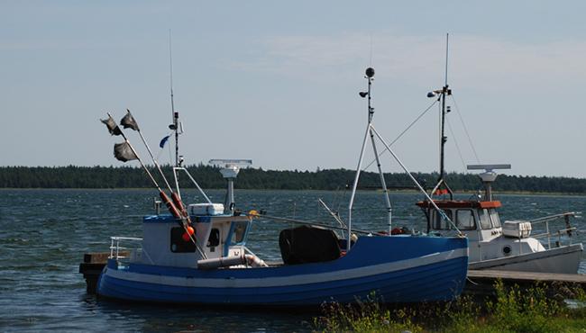 Gotlandsbilder-30-Lerviken
