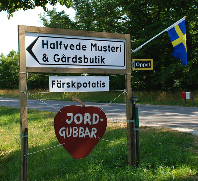 Gotlandsbilder-97