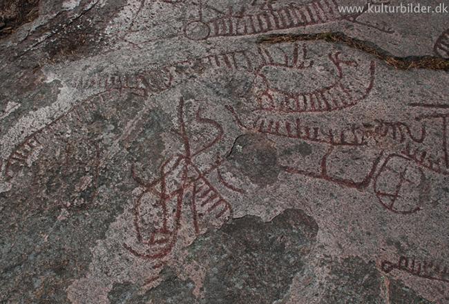 hasthallen-torhamn21