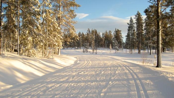 Vinter-21