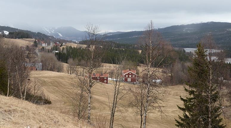 Utsikt från platsen där monumentet finns