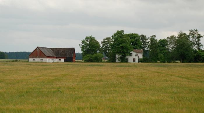 landsbygden-101