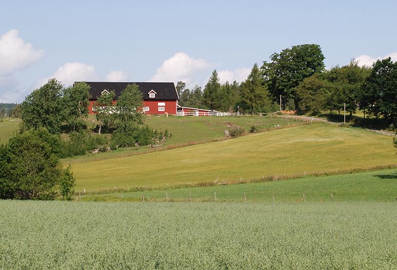 landsbygden-102
