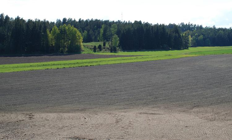 landsbygden-107