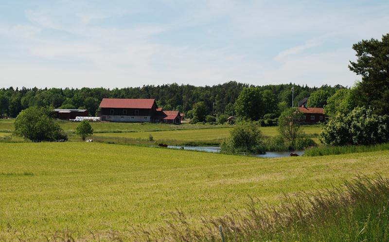 landsbygden-124