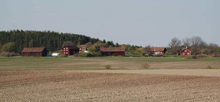 landsbygden-127