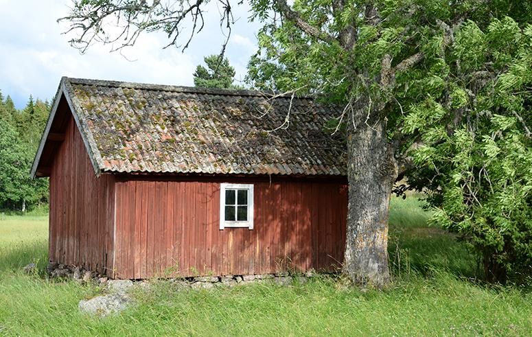 landsbygden-130