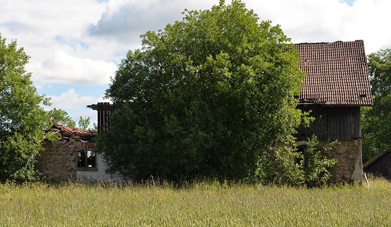 landsbygden-132