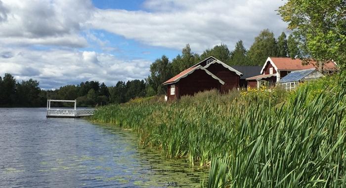 Erik-Larsgarden-Brovallen-03